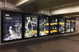 Короб с подсветкой — новая тенденция в рекламной войне