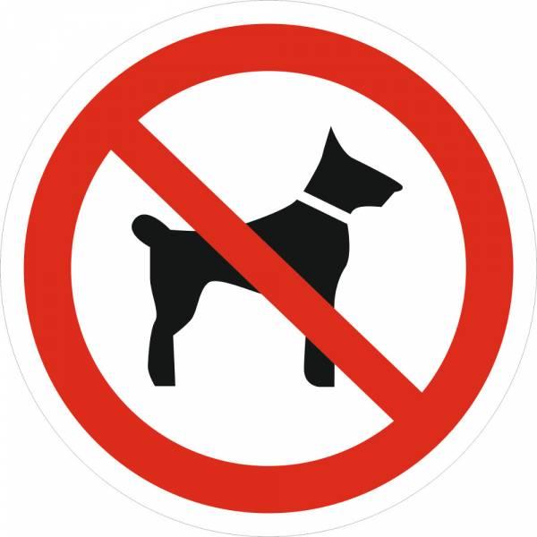 Знак 'Запрещается вход (проход) с животными' (ГОСТ Р 12.4.026-2001) 200х200 мм P14