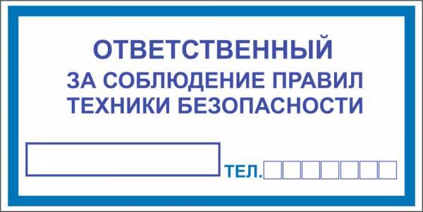 Знак ' ' (ГОСТ Р 12.4.026-2001) 200х100 мм S15