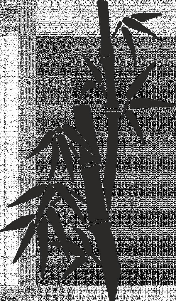 бамбук_контур